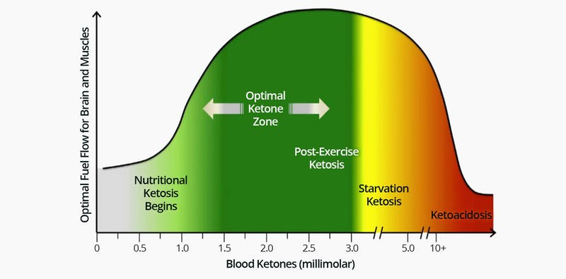 how long does it take to get into ketosis ketone chart